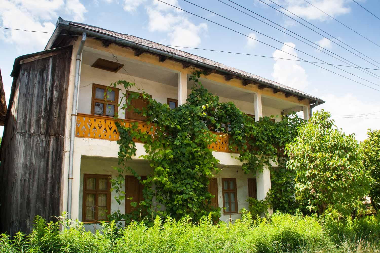 Locuință înaltă, început sec.XX, sat Balta, comuna Balta